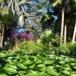 Sitio Litre un jardín con historia