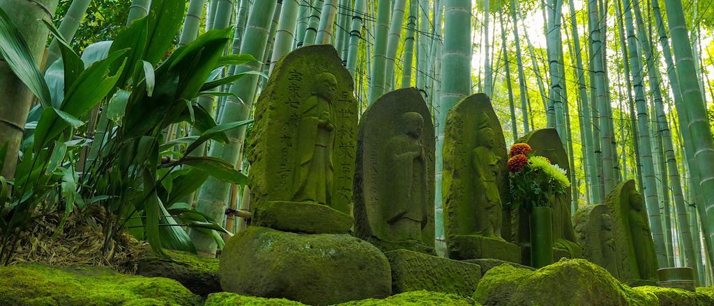 Itinerario de 7 días en Japón ⛩